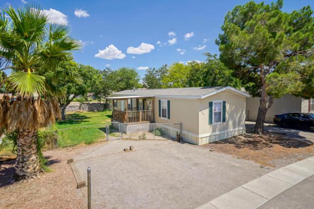 148 Turquoise Avenue, Las Cruces, NM 88001 (MLS #1807037) :: Steinborn & Associates Real Estate