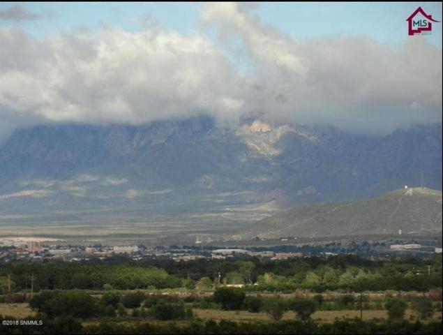 0 Crest Ridge Road, Las Cruces, NM 88005 (MLS #1807053) :: Steinborn & Associates Real Estate