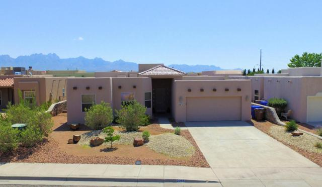 2266 Spirit Rock Drive, Las Cruces, NM 88011 (MLS #1807096) :: Steinborn & Associates Real Estate