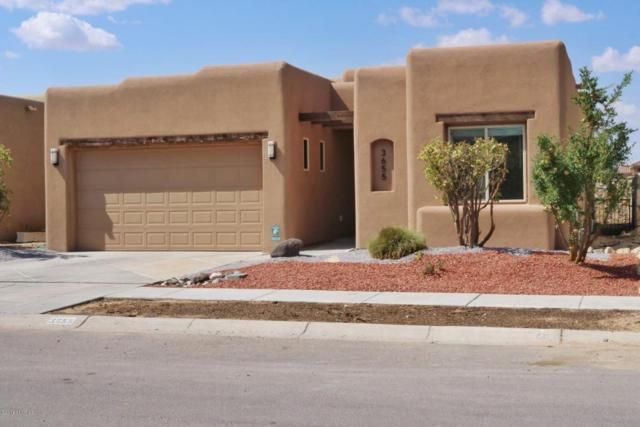 3655 Santa Cecilia Avenue, Las Cruces, NM 88012 (MLS #1807113) :: Austin Tharp Team