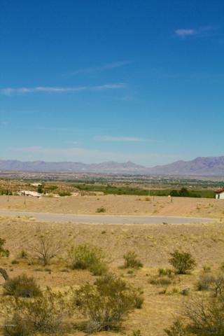 1543 Arco De Goya, Las Cruces, NM 88007 (MLS #1807263) :: Steinborn & Associates Real Estate