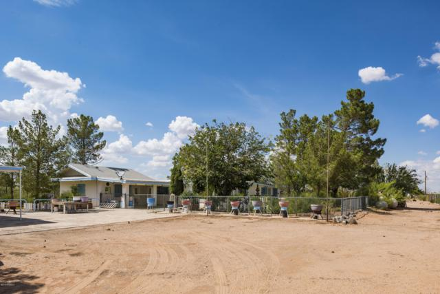 720 State Line Dr Drive, Chaparral, NM 88081 (MLS #1807278) :: Steinborn & Associates Real Estate
