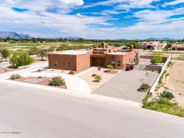 1321 Santanova Arc, Las Cruces, NM 88005 (MLS #1807286) :: Steinborn & Associates Real Estate