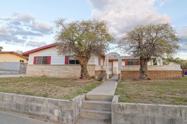 1918 Connie Lou Drive, Las Cruces, NM 88001 (MLS #1807288) :: Steinborn & Associates Real Estate
