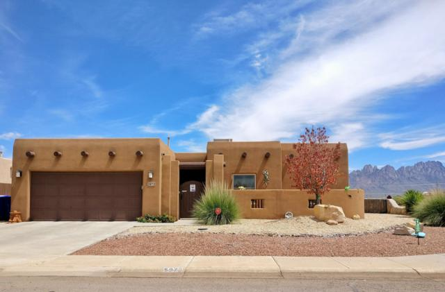 5972 Leaping Lizard Loop, Las Cruces, NM 88012 (MLS #1807313) :: Steinborn & Associates Real Estate