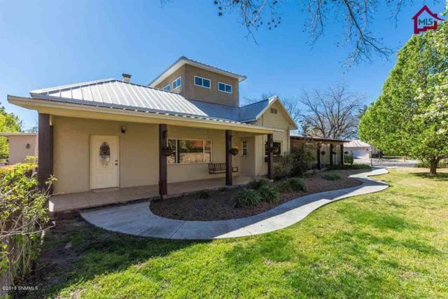 3392 Apple Cross Place, Las Cruces, NM 88005 (MLS #1807366) :: Steinborn & Associates Real Estate