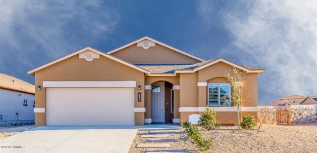 872 Holly Park Avenue, Santa Teresa, NM 88008 (MLS #1807405) :: Steinborn & Associates Real Estate