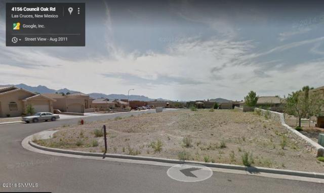 4156 Council Oak Road, Las Cruces, NM 88011 (MLS #1807462) :: Steinborn & Associates Real Estate