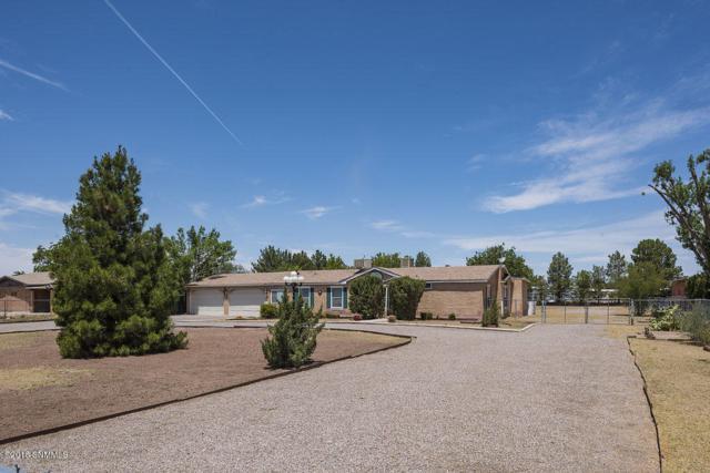 704 W Taylor, Las Cruces, NM 88007 (MLS #1807470) :: Steinborn & Associates Real Estate