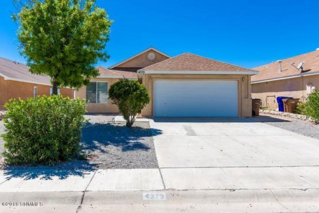 4379 Kingston Road, Las Cruces, NM 88012 (MLS #1807482) :: Steinborn & Associates Real Estate