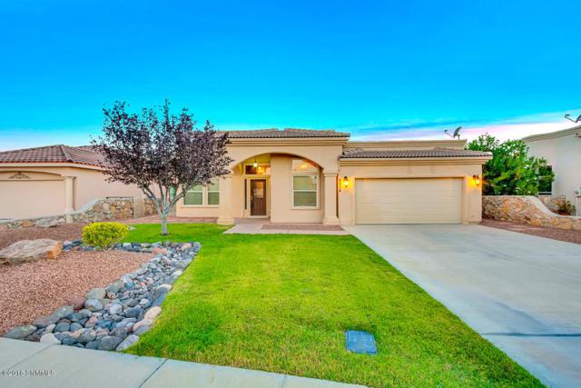 4214 Wildcat Canyon Drive, Las Cruces, NM 88011 (MLS #1807488) :: Steinborn & Associates Real Estate