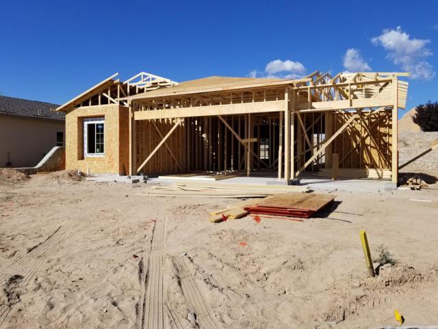 4103 Bravia Dove Loop, Las Cruces, NM 88001 (MLS #1807494) :: Steinborn & Associates Real Estate