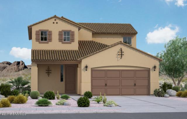 3023 San Lorenzo, Las Cruces, NM 88007 (MLS #1807513) :: Steinborn & Associates Real Estate
