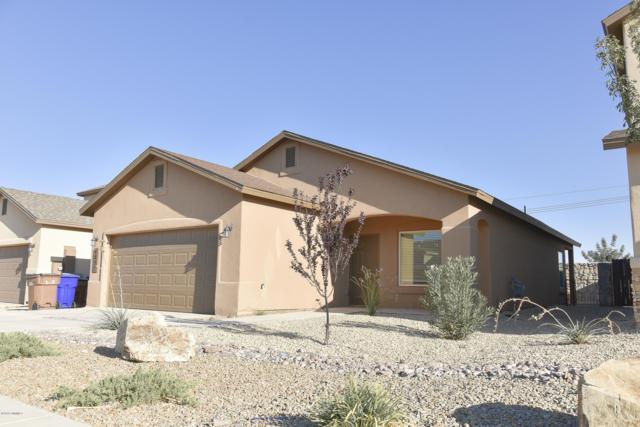 4857 Califa Avenue, Las Cruces, NM 88012 (MLS #1807537) :: Steinborn & Associates Real Estate