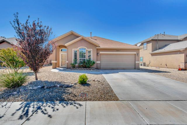 5887 Organ Peak Drive, Las Cruces, NM 88012 (MLS #1807553) :: Austin Tharp Team