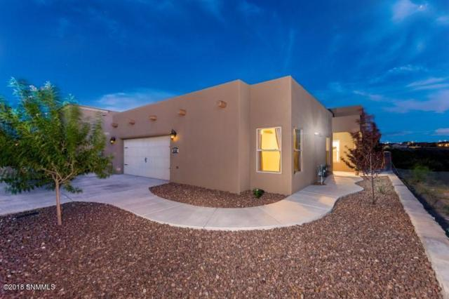 4156 Franzia Road, Las Cruces, NM 88011 (MLS #1807557) :: Steinborn & Associates Real Estate