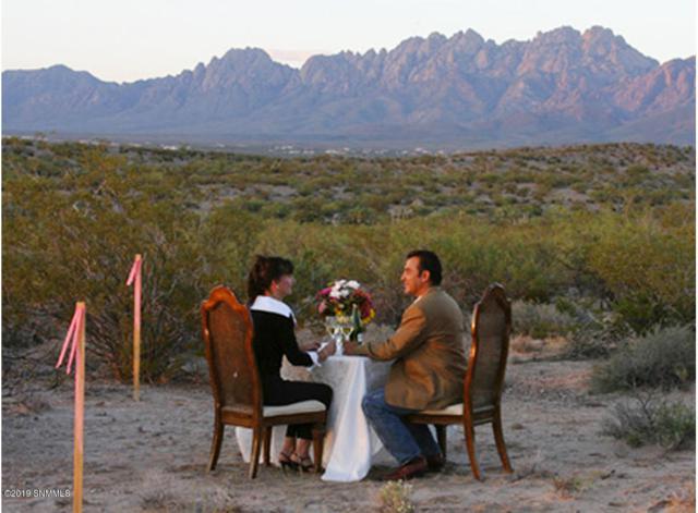 6466 Lazo Del Norte, Las Cruces, NM 88011 (MLS #1807577) :: Steinborn & Associates Real Estate
