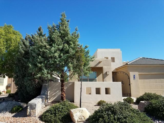 3647 Arroyo Verde Street, Las Cruces, NM 88011 (MLS #1807614) :: Steinborn & Associates Real Estate