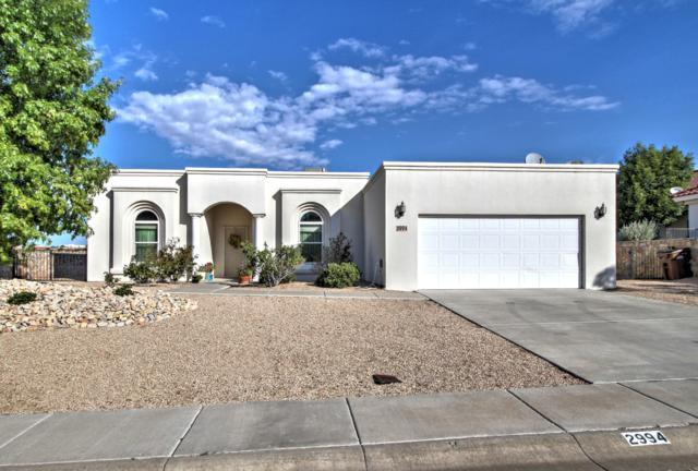 2994 Long Bow Loop, Las Cruces, NM 88011 (MLS #1807623) :: Steinborn & Associates Real Estate