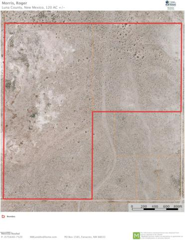 000 Palo Alto, Deming, NM 88030 (MLS #1807646) :: Better Homes and Gardens Real Estate - Steinborn & Associates
