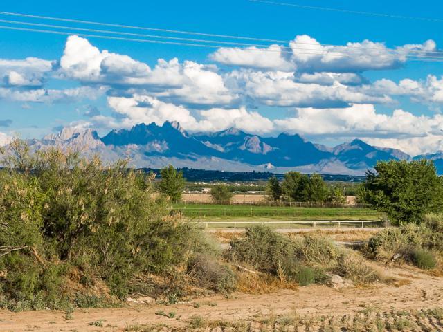 7390 La Fleche Place, Las Cruces, NM 88007 (MLS #1807686) :: Steinborn & Associates Real Estate