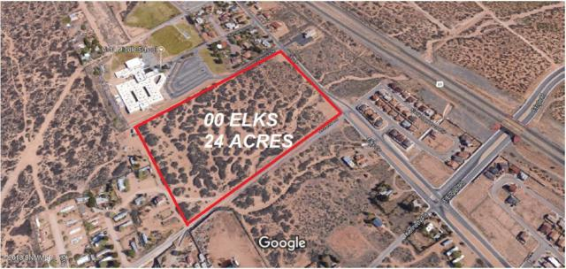 000 Elks Drive, Las Cruces, NM 88007 (MLS #1807687) :: Steinborn & Associates Real Estate