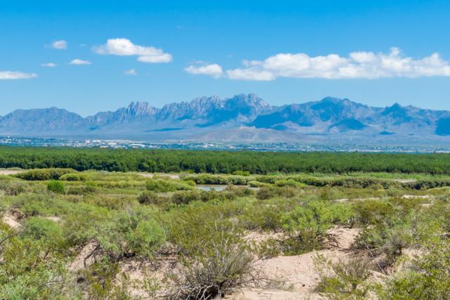 0000 Mesilla Hills Drive, Las Cruces, NM 88005 (MLS #1807695) :: Steinborn & Associates Real Estate
