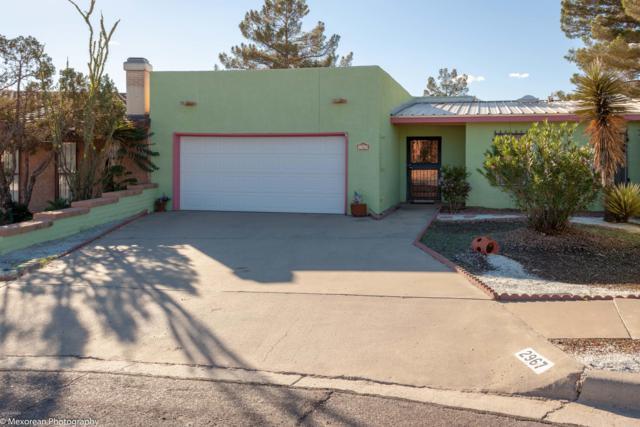 2967 Sundance Circle, Las Cruces, NM 88011 (MLS #1807710) :: Steinborn & Associates Real Estate