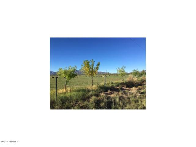 985 W Wicker Road, Chaparral, NM 88081 (MLS #1807715) :: Steinborn & Associates Real Estate