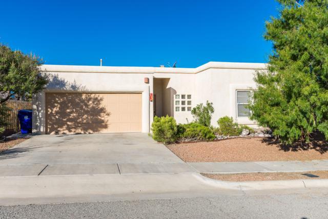 4594 Rock Canyon Loop, Las Cruces, NM 88011 (MLS #1807754) :: Steinborn & Associates Real Estate