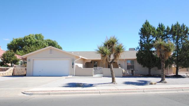 3048 Spitz Street, Las Cruces, NM 88005 (MLS #1807755) :: Austin Tharp Team