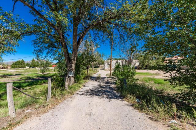5282 Dona Ana Road, Las Cruces, NM 88007 (MLS #1807762) :: Austin Tharp Team
