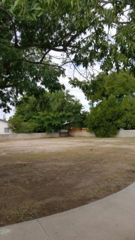 700 W Chestnut Avenue, Las Cruces, NM 88005 (MLS #1807771) :: Steinborn & Associates Real Estate