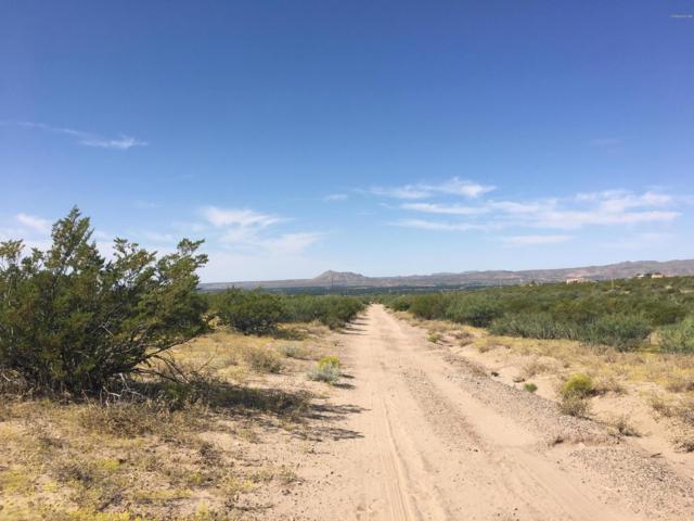 0000 Tucson Avenue, Las Cruces, NM 88012 (MLS #1807773) :: Austin Tharp Team