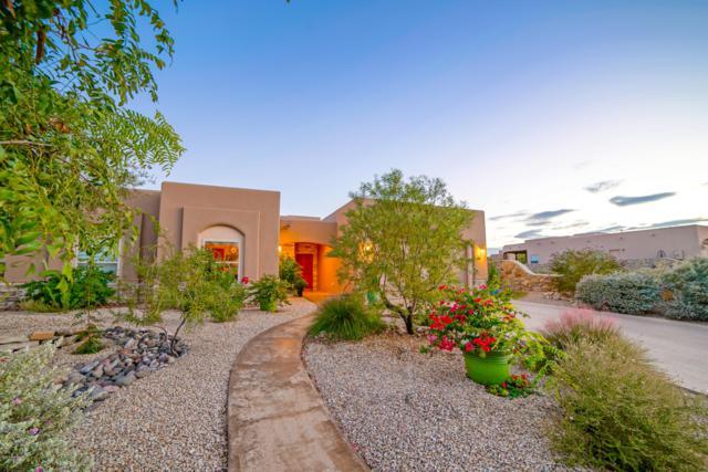 4268 Golden Sage Court, Las Cruces, NM 88011 (MLS #1807787) :: Steinborn & Associates Real Estate