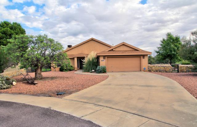 1850 Cochita Lane, Las Cruces, NM 88007 (MLS #1807802) :: Steinborn & Associates Real Estate