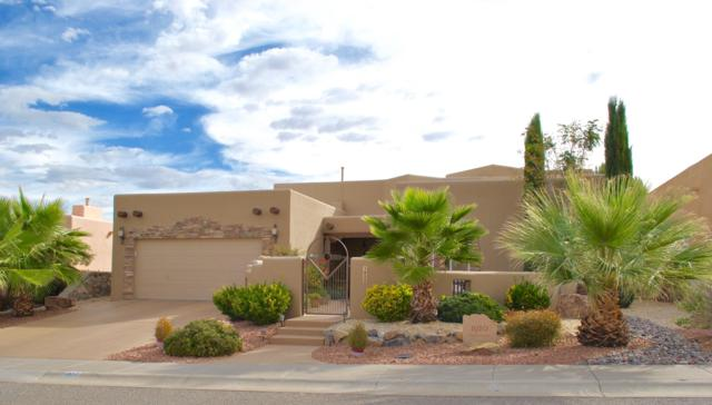 1920 Palm Canyon Drive, Las Cruces, NM 88011 (MLS #1807832) :: Austin Tharp Team