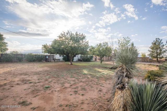 6640 Gopher, Las Cruces, NM 88012 (MLS #1807835) :: Steinborn & Associates Real Estate