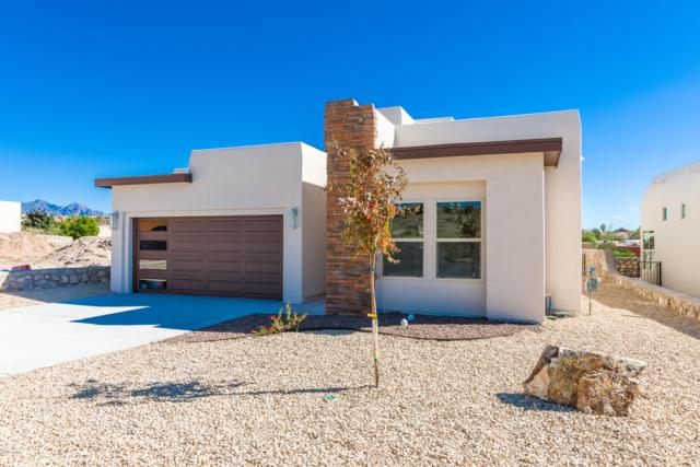 2848 Maddox Loop, Las Cruces, NM 88011 (MLS #1807893) :: Austin Tharp Team