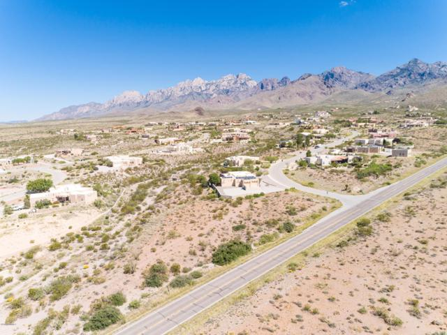 5000 Cripple Creek Road, Las Cruces, NM 88011 (MLS #1807895) :: Steinborn & Associates Real Estate