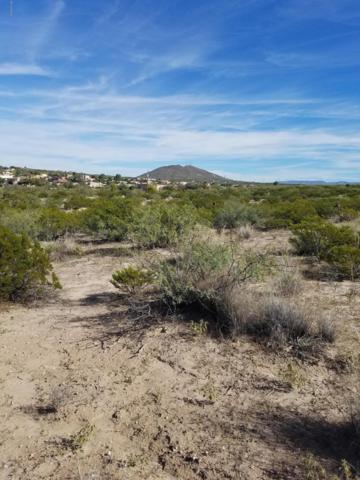 0000 Sand Hill Road, Las Cruces, NM 88012 (MLS #1807912) :: Steinborn & Associates Real Estate