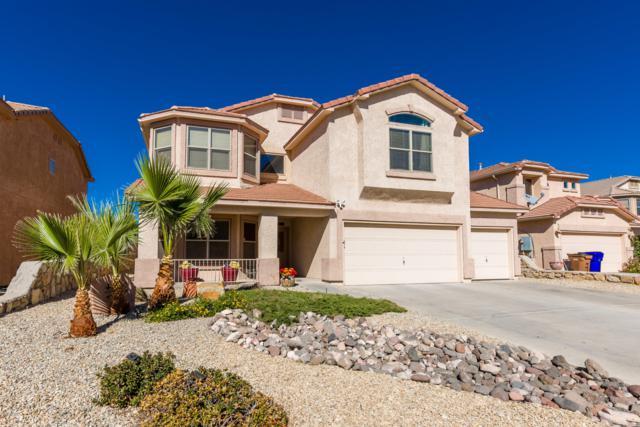 4513 Azure Hills Road, Las Cruces, NM 88011 (MLS #1807962) :: Austin Tharp Team