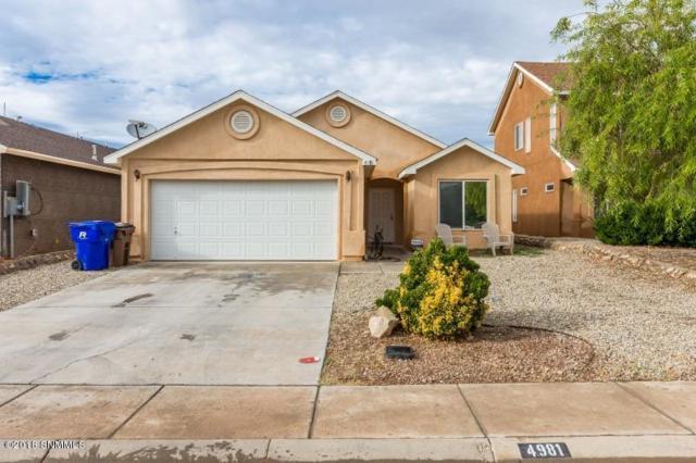 4981 Bosworth Road, Las Cruces, NM 88012 (MLS #1807964) :: Austin Tharp Team