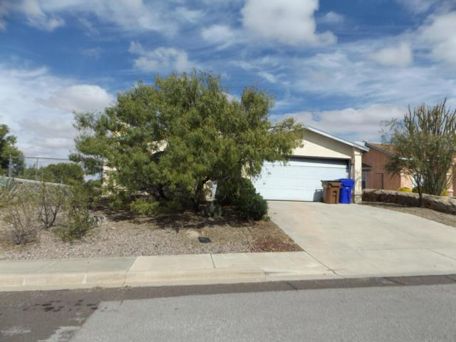 3925 Marble View Drive, Las Cruces, NM 88012 (MLS #1807994) :: Steinborn & Associates Real Estate