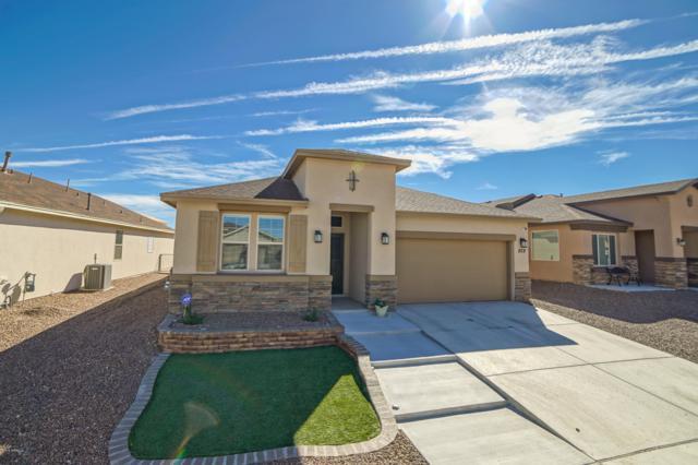 829 Holly Park Avenue, Sunland Park, NM 88063 (MLS #1808003) :: Steinborn & Associates Real Estate