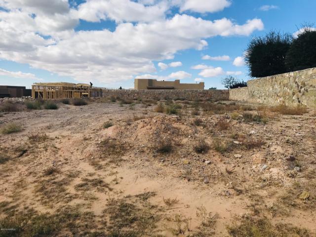 2519 Pagosa Hills Avenue, Las Cruces, NM 88011 (MLS #1808010) :: Austin Tharp Team