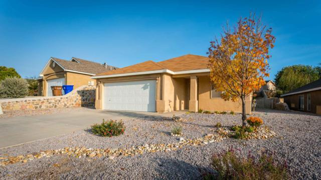 1150 Steins Drive, Las Cruces, NM 88012 (MLS #1808012) :: Austin Tharp Team