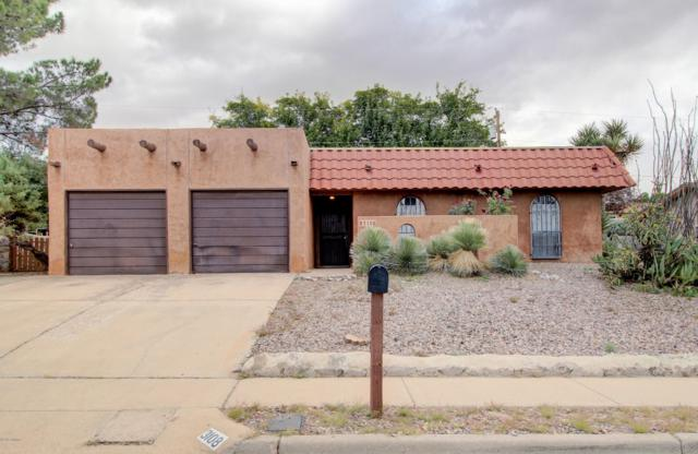 3108 Dyer Street, Las Cruces, NM 88011 (MLS #1808045) :: Steinborn & Associates Real Estate
