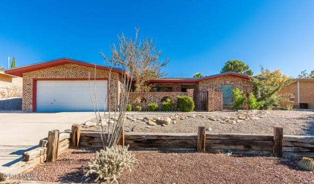 1729 Pomona Drive, Las Cruces, NM 88011 (MLS #1808051) :: Steinborn & Associates Real Estate