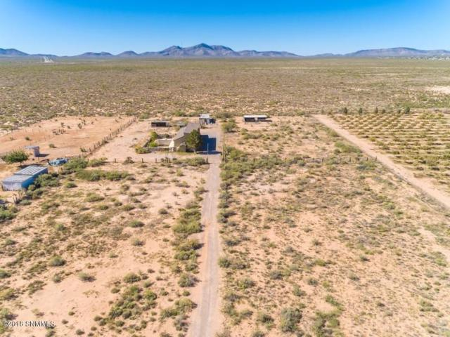 651 Tumbleweed Road, Chaparral, NM 88081 (MLS #1808057) :: Steinborn & Associates Real Estate